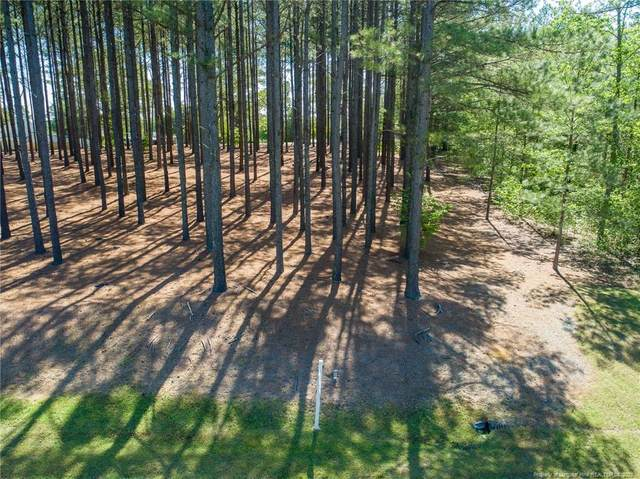 155 Josie Drive, Benson, NC 27504 (MLS #640320) :: Towering Pines Real Estate