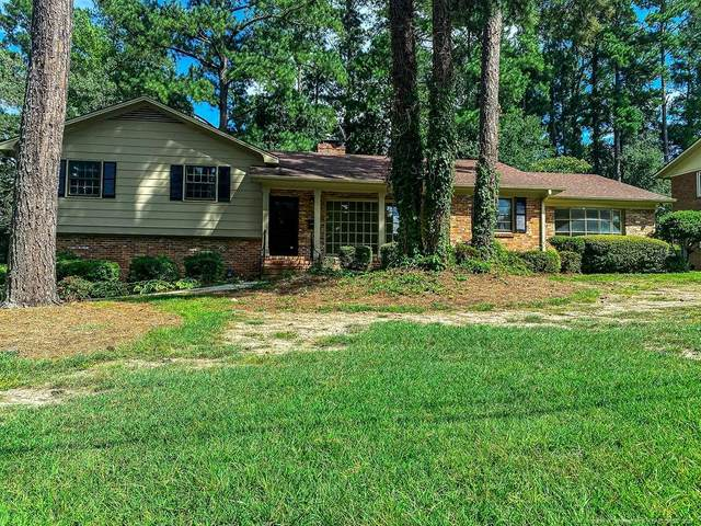 215 Northview Drive, Fayetteville, NC 28303 (MLS #642223) :: Freedom & Family Realty