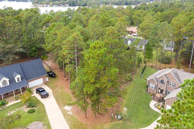 156 Harborview Drive, Sanford, NC 27332 (MLS #644731) :: Freedom & Family Realty