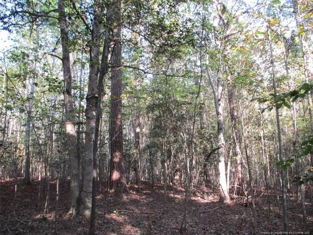 Hiawatha Trail, Sanford, NC 27330 (MLS #644809) :: Moving Forward Real Estate