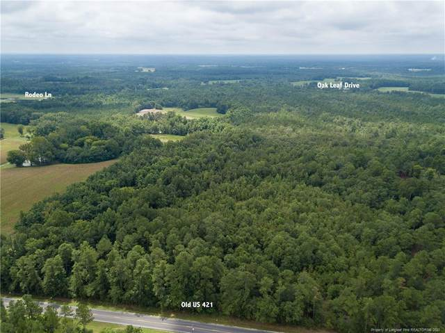 0 Old Us 421 Highway, Bunnlevel, NC 28323 (MLS #644829) :: Premier Team of Litchfield Realty