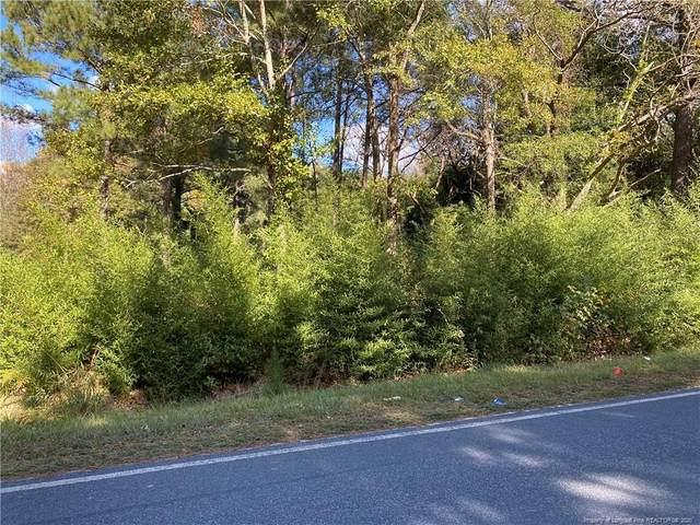 Moores Chapel Road, Lillington, NC 27546 (MLS #645975) :: Freedom & Family Realty