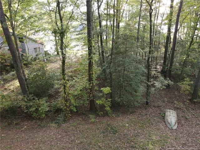 964 Harbor Side Drive, Sanford, NC 27332 (MLS #647062) :: Moving Forward Real Estate