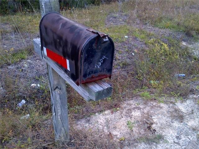 2004 Ivanhoe Road, Ivanhoe, NC 28447 (MLS #647089) :: Freedom & Family Realty