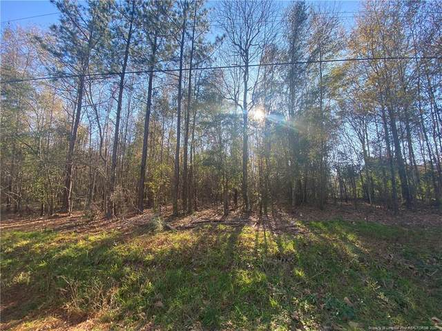 0 Burgess Circle, Broadway, NC 27505 (MLS #647395) :: Freedom & Family Realty