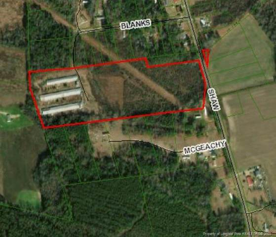 199 Blanks Road, St. Pauls, NC 28384 (MLS #647749) :: The Signature Group Realty Team