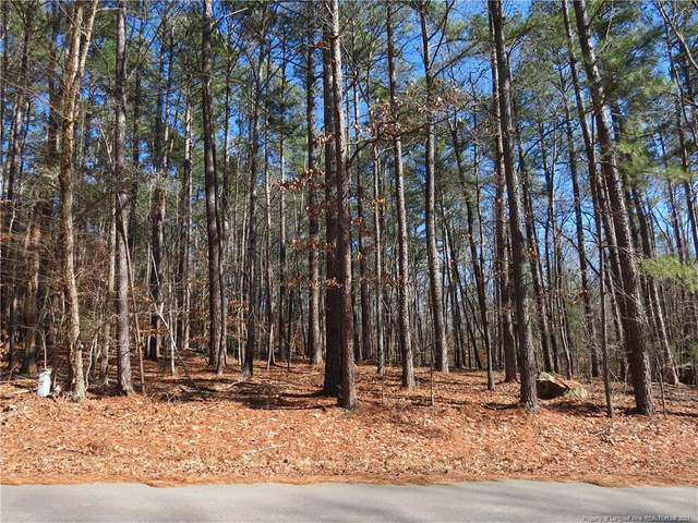 Lot 53 Dumbarton Drive, Sanford, NC 27330 (MLS #650126) :: On Point Realty