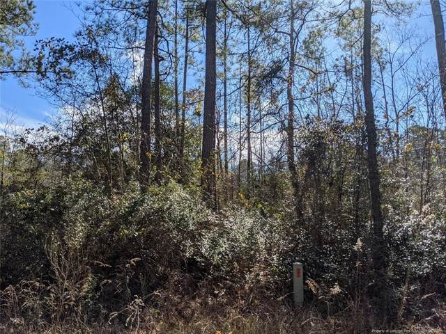 Lot 4 & Lot 5 Summer Creek Trail, Cameron, NC 28326 (MLS #651637) :: Freedom & Family Realty