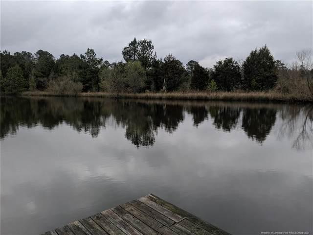 2051 Lydia Perry Road, Bear Creek, NC 27207 (MLS #653900) :: Freedom & Family Realty