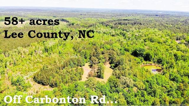 3868 Carbonton Road, Sanford, NC 27330 (MLS #656862) :: Towering Pines Real Estate