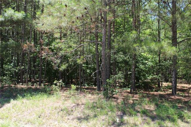1242 White Hill Road, Sanford, NC 27330 (MLS #659772) :: Freedom & Family Realty
