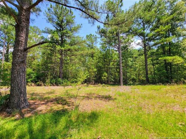 Bumpy Lane, Sanford, NC 27332 (MLS #662588) :: Moving Forward Real Estate