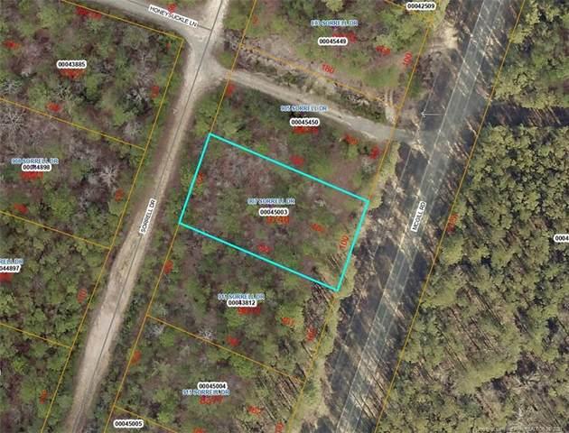 907 Sorrel Drive, Vass, NC 28394 (MLS #663221) :: RE/MAX Southern Properties