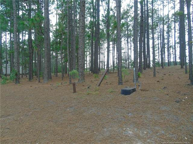 120 Kings Ridge Court, Southern Pines, NC 28387 (MLS #664961) :: RE/MAX Southern Properties