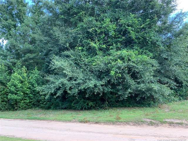 Pinpoint Road, Fayetteville, NC 28312 (#665404) :: Steve Gunter Team