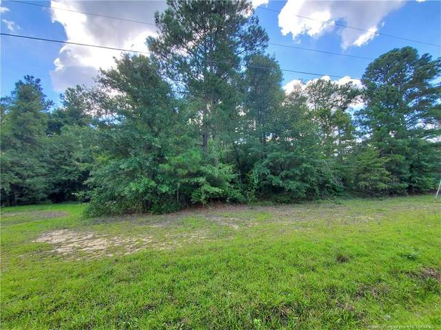 Mckinnon Rd Road, Fayetteville, NC 28312 (MLS #665579) :: The Signature Group Realty Team