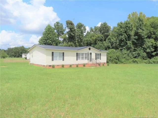 159 Mason Hill Lane, Lillington, NC 27546 (MLS #665724) :: Freedom & Family Realty