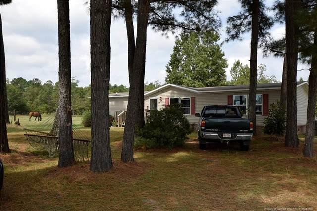 62 Stewart Farm Lane, Spring Lake, NC 28390 (#668366) :: The Blackwell Group