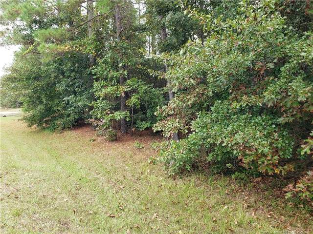 196 Raynor Sands Drive, Dunn, NC 28334 (MLS #670570) :: RE/MAX Southern Properties