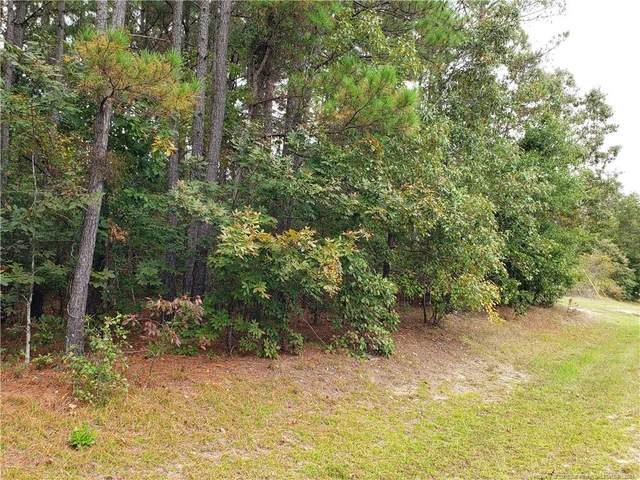 172 Raynor Sands Drive, Dunn, NC 28334 (MLS #670573) :: The Signature Group Realty Team