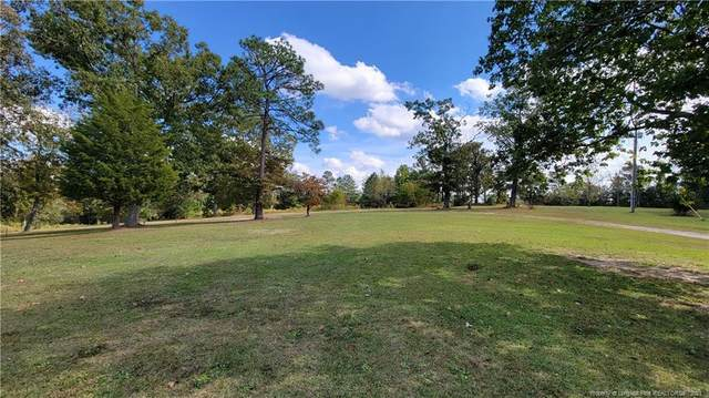 0 Old Jefferson Davis Highway, Cameron, NC 27330 (MLS #671010) :: Freedom & Family Realty