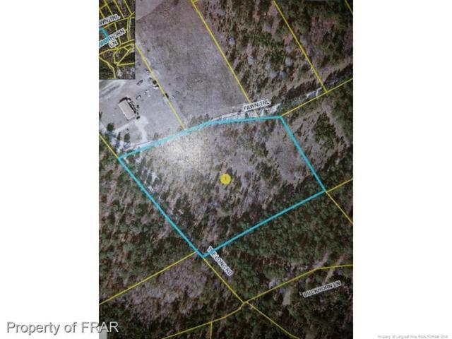 1170 The Long Road, Raeford, NC 28376 (MLS #552079) :: Weichert Realtors, On-Site Associates