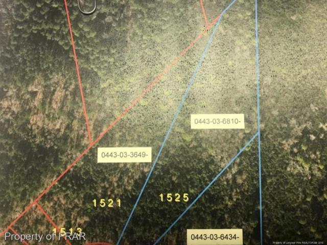 1521 Halsey Loop, Hope Mills, NC 28348 (MLS #553809) :: Weichert Realtors, On-Site Associates