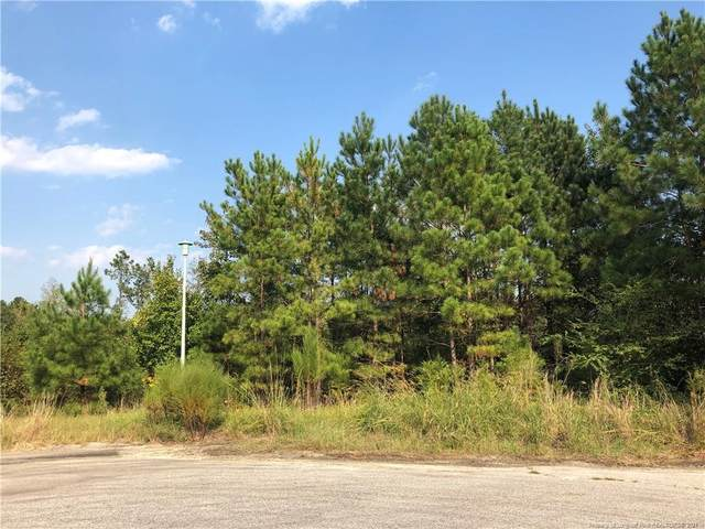115 Ithica Lane, Bunnlevel, NC 28323 (MLS #617960) :: RE/MAX Southern Properties