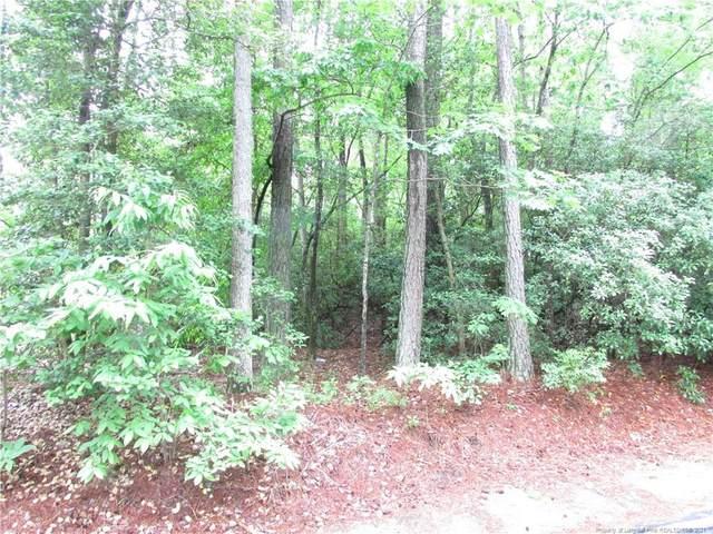 5073 Bluebird Drive, Sanford, NC 27330 (MLS #629962) :: Towering Pines Real Estate