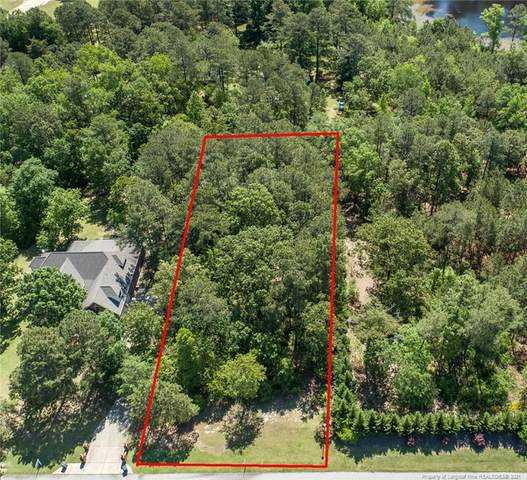 255 Josie Drive, Benson, NC 27504 (MLS #640317) :: RE/MAX Southern Properties