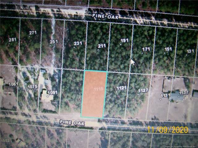 1115 Pine Oak Drive, Cameron, NC 28326 (MLS #645981) :: RE/MAX Southern Properties