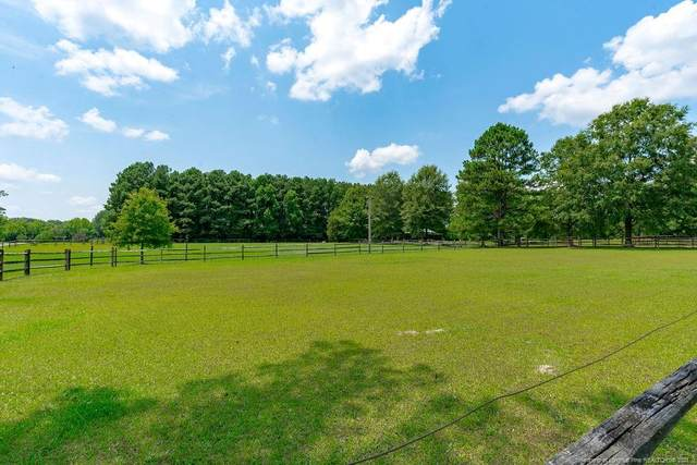 68 Amelia Lane, Holly Springs, NC 27540 (MLS #647960) :: The Signature Group Realty Team