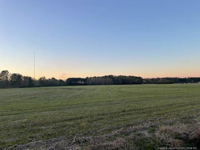 Mary C Road, Lumberton, NC 28384 (MLS #653191) :: The Signature Group Realty Team