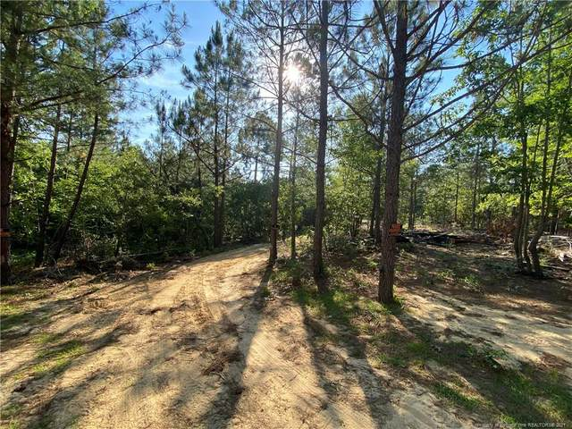 487 Akor Place, Cameron, NC 28326 (MLS #659536) :: Freedom & Family Realty