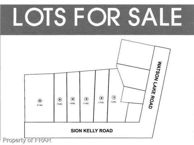 0 Sion Kelly Road-Lot 6, Sanford, NC 27330 (MLS #519463) :: Weichert Realtors, On-Site Associates