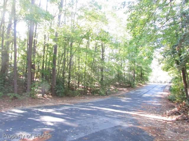 1452 Carolina Drive, Sanford, NC 27330 (MLS #551464) :: Moving Forward Real Estate