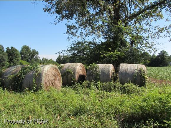 Raven Rock Rd., Lillington, NC 27546 (MLS #529892) :: Weichert Realtors, On-Site Associates