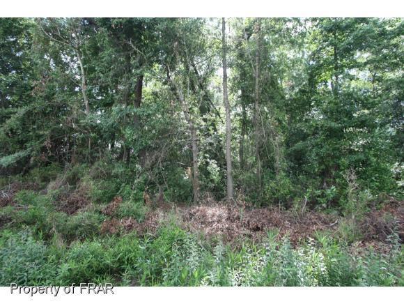 Snake Road, Lumberton, NC 28358 (MLS #542729) :: Weichert Realtors, On-Site Associates