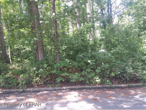 0 Carr Street, Sanford, NC 27330 (MLS #547659) :: Weichert Realtors, On-Site Associates