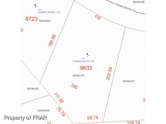 Woodlake, Vass, NC 28394 (MLS #549272) :: Weichert Realtors, On-Site Associates