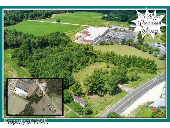 808 Us 401 S, Lillington, NC 27546 (MLS #549277) :: Weichert Realtors, On-Site Associates