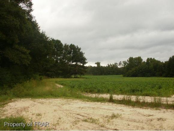 915 Walt Johnson Road, Lillington, NC 27546 (MLS #549321) :: Weichert Realtors, On-Site Associates
