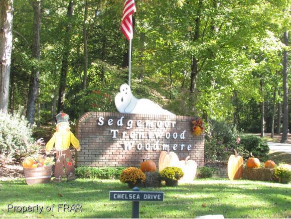 754 Turnbury Court, Sanford, NC 27332 (MLS #551754) :: Weichert Realtors, On-Site Associates