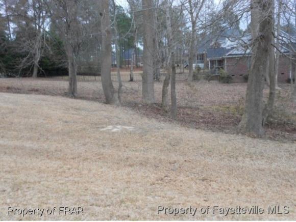 700 Anderson Creek Drive, Spring Lake, NC 28390 (MLS #553222) :: The Rockel Group