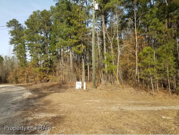 121 Creek View Dr, Vass, NC 28394 (MLS #553370) :: The Rockel Group