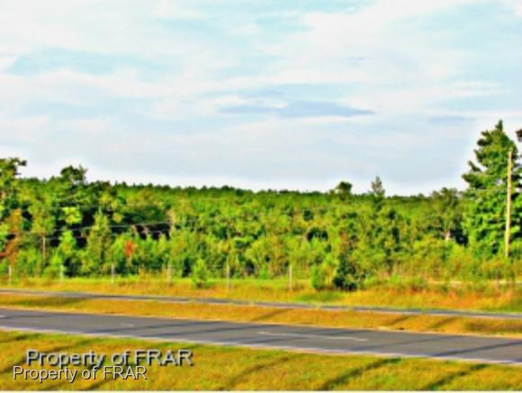 00 (N Tract) Sugar Maple Road - Photo 1