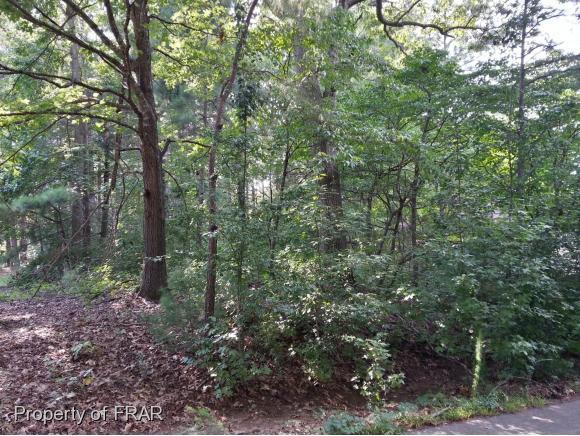 4011 Deer Track Trail, Sanford, NC 27332 (MLS #554358) :: Weichert Realtors, On-Site Associates