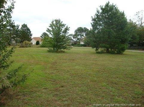 751 Dayflower Court, Vass, NC 28394 (MLS #601699) :: Weichert Realtors, On-Site Associates