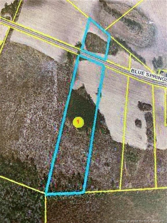 Blue Springs 8 Road, Red Springs, NC 28377 (MLS #602627) :: Weichert Realtors, On-Site Associates