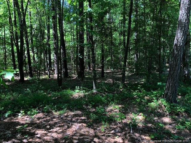 4006 Deer Track Trail, Sanford, NC 27332 (MLS #607339) :: Weichert Realtors, On-Site Associates